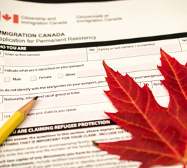 Immigration Lawyers in Edmonton - Provincial Nominee
